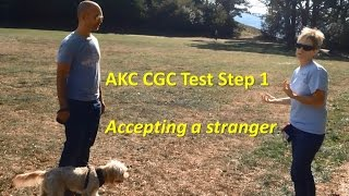 Akc Cgc Test - Step 1 - Accepting A Friendly Stranger