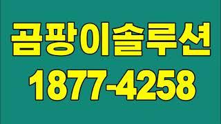 강북곰팡이제거, 수유동 창동 아파트 벽지 곰팡이청소(단…