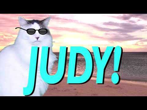 Happy Birthday Judy Epic Cat Happy Birthday Song Youtube