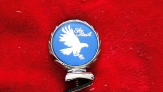 Buick SkyHawk Hood Ornament