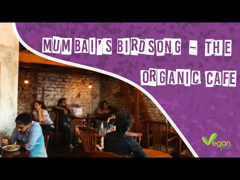 A look at Mumbai's Birdsong - The Organic Cafe