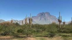 Hiking Trails - Lower Salt River Trail, Mesa, Arizona - Easy