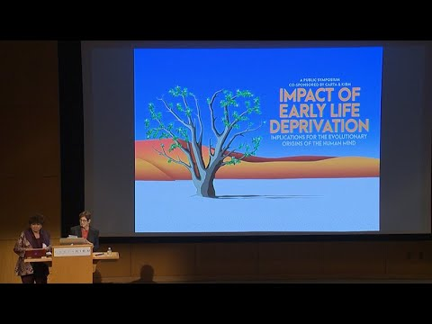 Impact Of Early Life Deprivation  Conclusion And Questions And Answers
