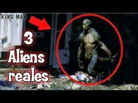 Auténticos extraterrestres capturados en fotografías de raza o civilización similares