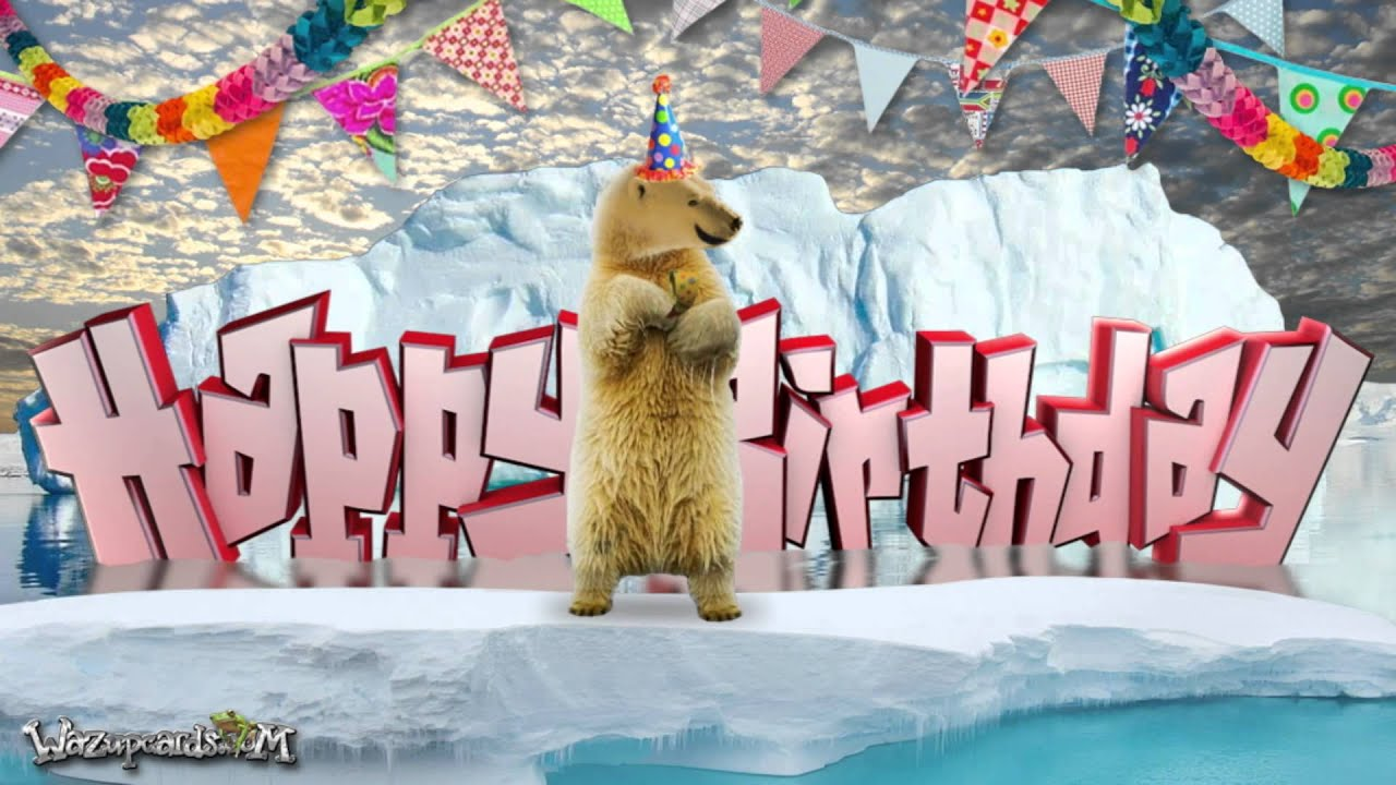 Happy Birthday - Polar Bear and Friends - YouTube