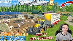 L'AVENTURE DES 3 FERMES S2 ! 250 COCHONS A VENDRE !