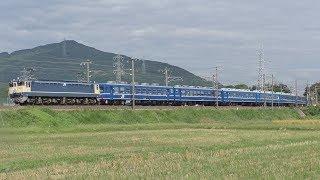 【JR西日本】特別列車 12系急行 阿蘇 EF65-1128