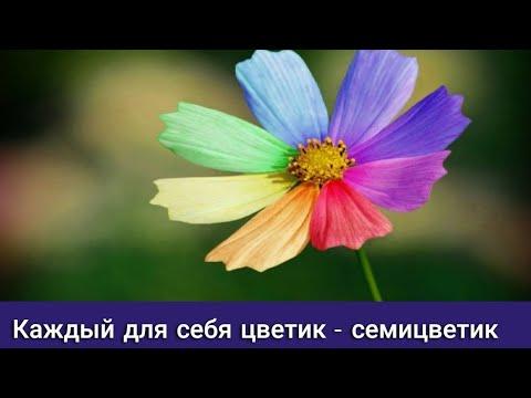 Пишут мне, докажи что ты Бог, исполни моё желание. Отвечаю - я есть Бог своей мерности сути Бога.