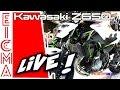Kawasaki Z650 e Z900 | Live da Eicma 2016