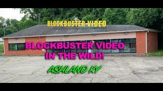 BLOCKBUSTER VIDEO - IN THE WILD