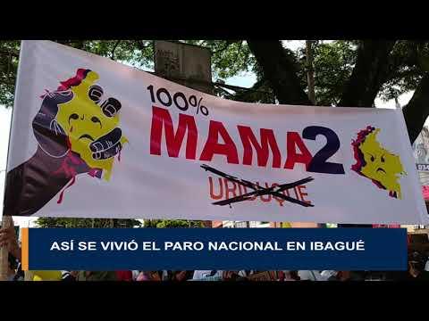 Así transcurrió la protesta social en el departamento del Tolima