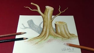 How To Draw A 3D Tree Trunk - 3d Art | Optical illusion | Easy And Simple Steps |