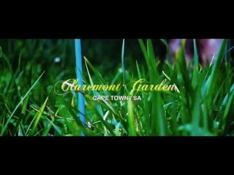 Arderne Gardens Claremont , Cape town Footages