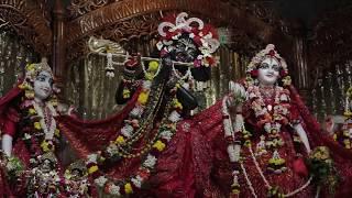 HH Kadamba Kanana Swami - Ekadasi Kirtan in Sri Mayapur Dham