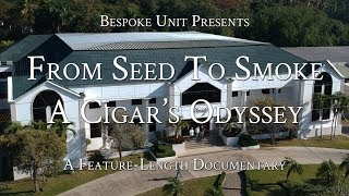 From Seed To Smoke: A Cigar's Odyssey | Davidoff Cigar Factory & Farms (How Cigars Are Made)