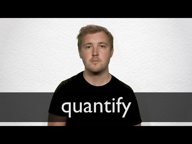 what does it mean to quantify something
