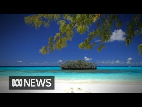 New Caledonia referendum | ABC News