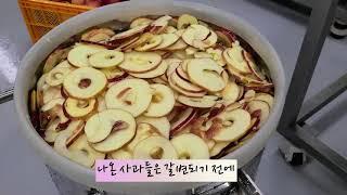 [엠지산업 동결건조기] 동결건조 사과칩 만들기