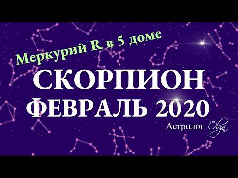 СКОРПИОН гороскоп на ФЕВРАЛЬ 2020. Меркурий Ретро. Астролог Olga