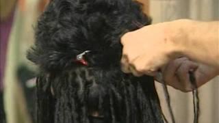 Плетение африканских косичек часть 1