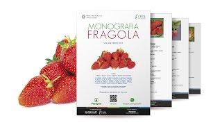 Fragola - Monografia Crea - Nuovo ebook #macfrut