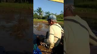 Download Video Kenangan  babakan limbangan Sukaraja MP3 3GP MP4