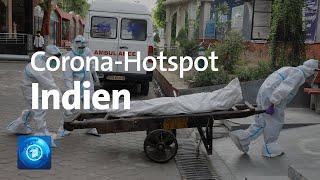 Corona-hotspot indien