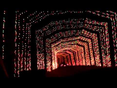Blora Christmas Lights