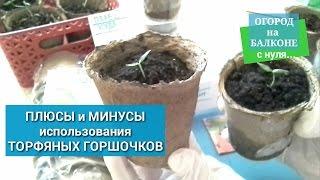 видео Торфяные горшки