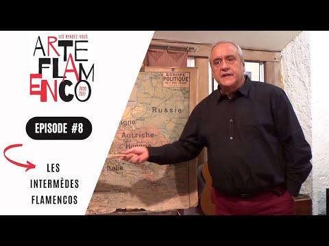 [ Épisode 8 ] Les Rendez-vous Arte Flamenco, c'est aussi des Intermèdes flamencos