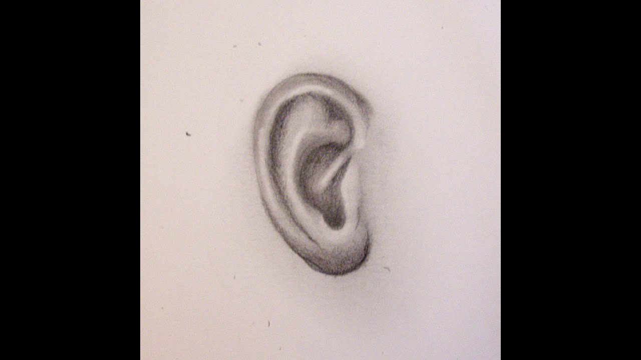 Préférence Come disegnare un orecchio. Corso di disegno per principianti  TL79