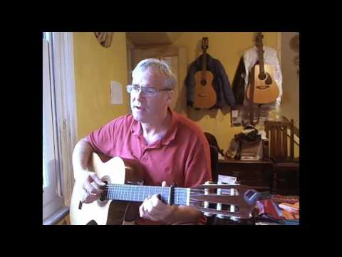 Fields of Athenry Acoustic Cover