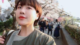 도쿄 #1-1,  혼자 떠난 도쿄 벚꽃여행