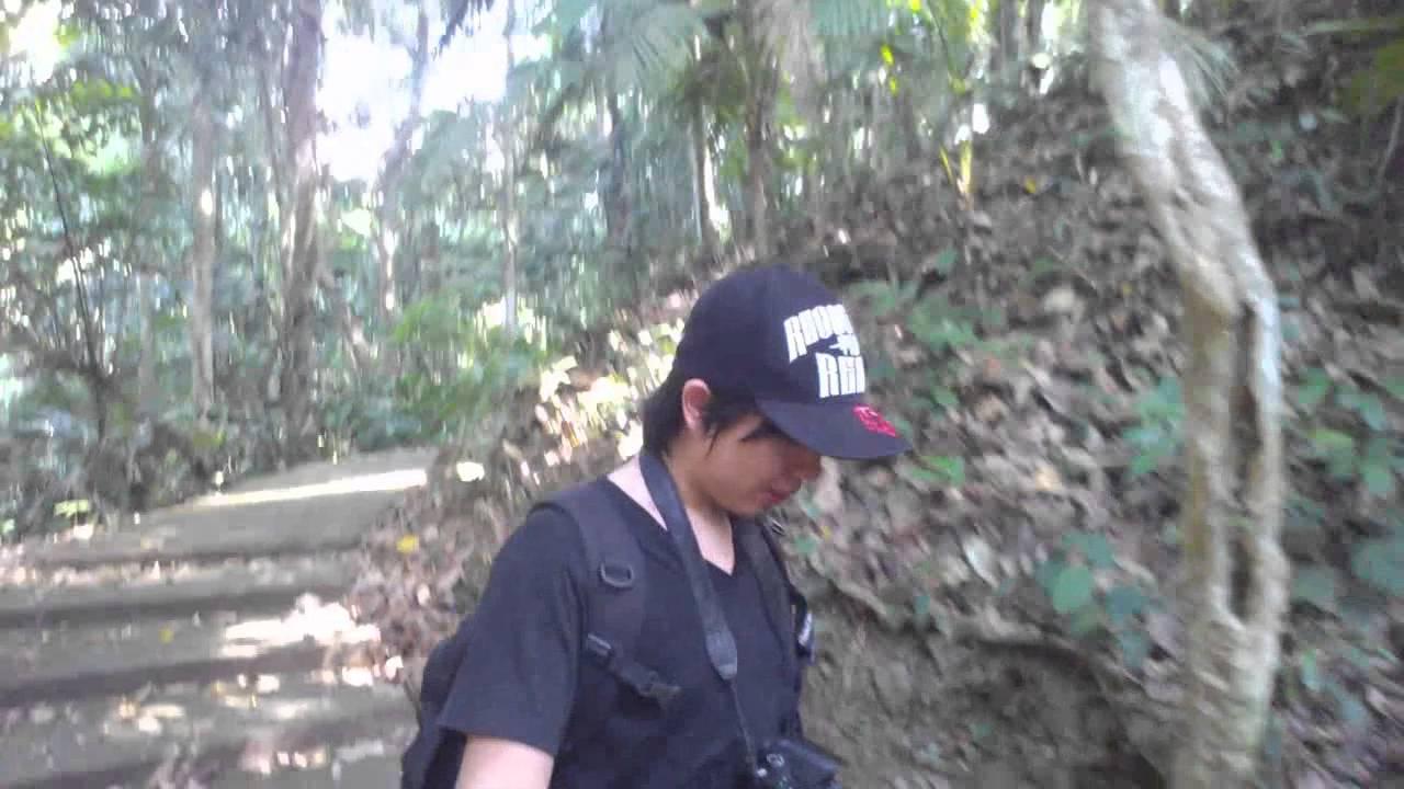 UP Los Banos , Botanical Garden   YouTube