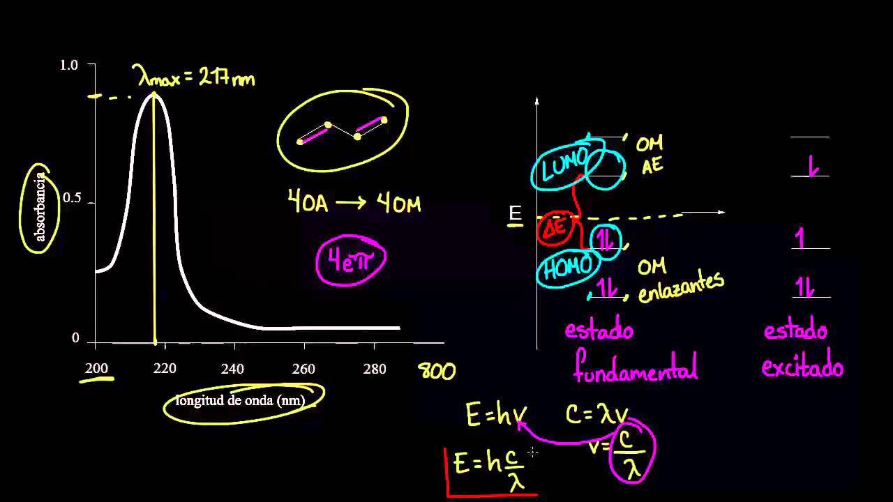 download The rhizosphere : biochemistry and organic