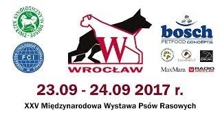 XXV Międzynarodowa Wystawa Psów Rasowych we Wrocławiu - sobota
