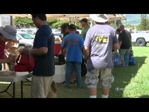 PBS Hawai'i - HIKI N? Episode 710   Kamehameha Schools Maui Middle   Feed My Sheep