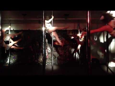 CATS @ The Pole Gym Brisbane City