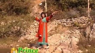 Rahim Shah, Gul Panra - Jenai Sama Patasa Ye