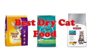Top 10 Best Dry Cat Foods 2018