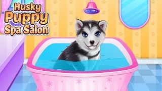 Husky Puppy Spa Salon(Take a good care of this cute husky puppy and dress him up in this animal game. Get it on Google Play: ..., 2017-01-11T00:11:19.000Z)