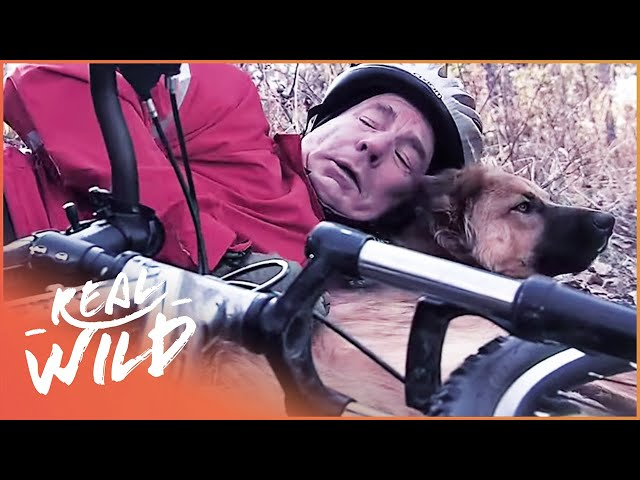 Heroic Dog Saves Injured Cyclist In Epic Rescue | Pet Heroes | Real Wild