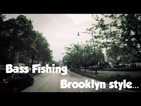NYC Fishing at Prospect Park Brooklyn New York City 2017 - First time ever! Finesse bass Fishing