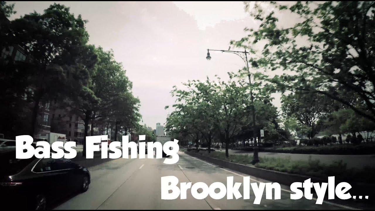 Nyc Fishing At Prospect Park Brooklyn New York City 2017 First