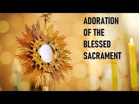 Adoration of the Blessed Sacrament   Fri, Sep. 25 2020
