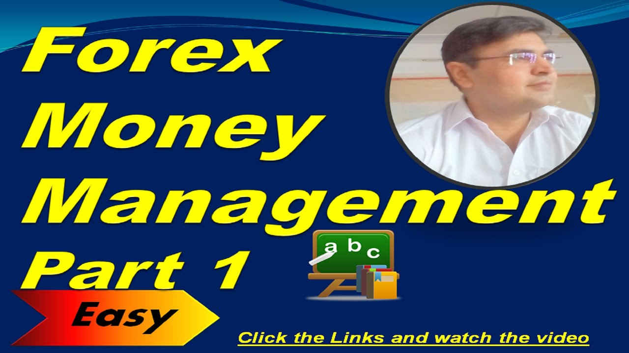 Forex training course dvd