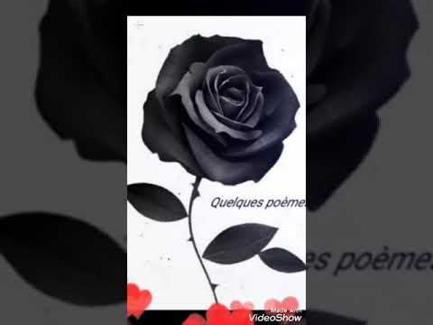 Très Belle Chanson Amour Tristecœur Brisé Youtube