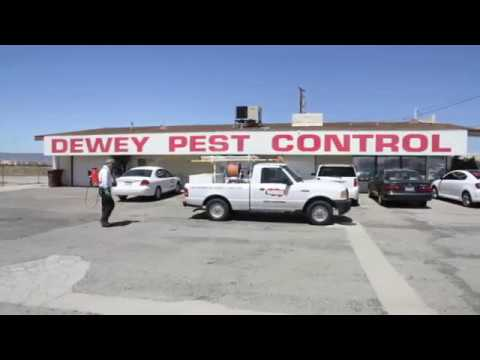 About Us Dewey Pest Control
