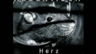 Rebentisch - Herz Zerrissen - Zeit [Rmx by Cabo de Gata] (2009) - Track 10