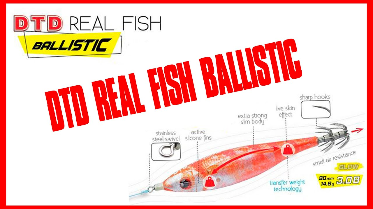 6⃣ EGIS favoritos para pescar Calamares / DTD REAL FISH BALLISTIC